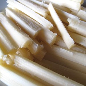 sugarcane chewing sticks