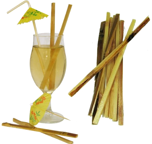 sugarcane swizzle sticks