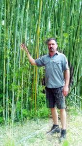 seabreeze bamboo screen